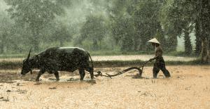 Lluvia en Birmania