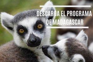 Banner Madagascar
