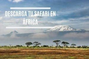 tu safari en áfrica 15 días
