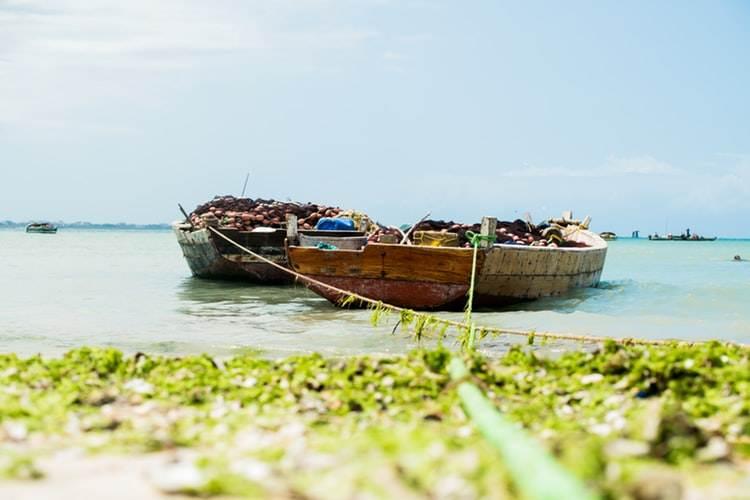 Barcas tradicionales de pesca en la orilla