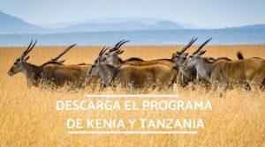 programa de kenia y tanzania