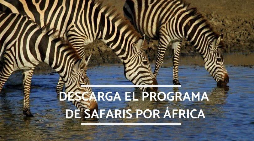 programas safari por África