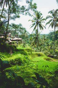 Paisaje de montaña en Indonesia