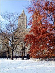 NY_nevado