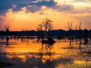 Lago Siem