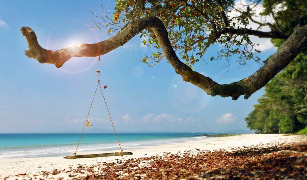 Columpio en árbol en Radhanagar Beach