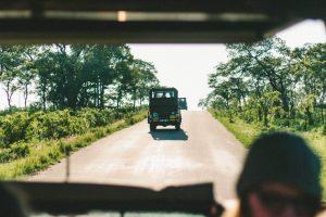 Conjunto de jeeps en un safari por Kenia