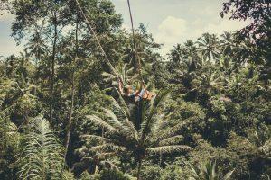 Columpio sobre una inmensa selva de palmeras