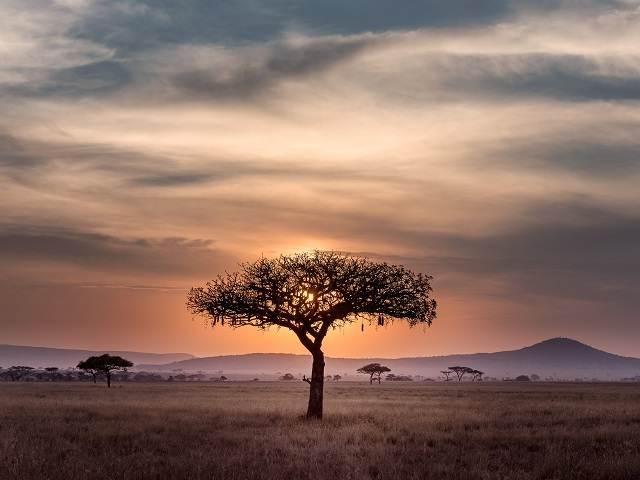 15 días en Tanzania viendo atardeceres como este en el Serengeti
