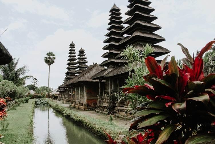 Templos rodeados de vegetación