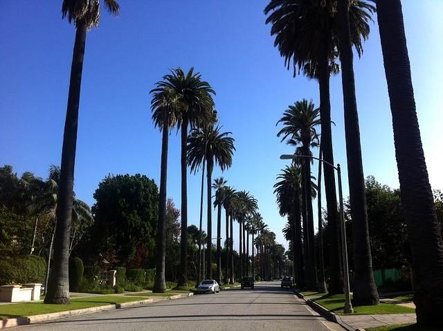calle de beverly hills