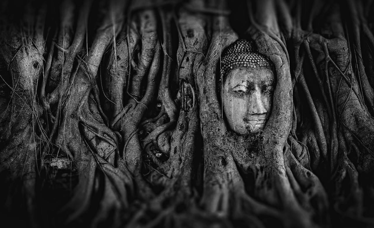 Qué ver en Tailandia en 15 días: templos, ciudades y playas