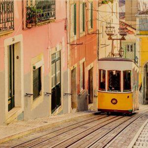 cosmopolitas Lisboa