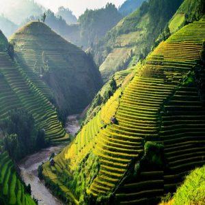 Indochina Milenaria