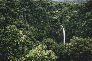 Cascada en un Bosque Tropical en Costa Rica