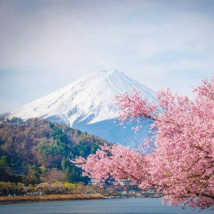 Japon espiritual