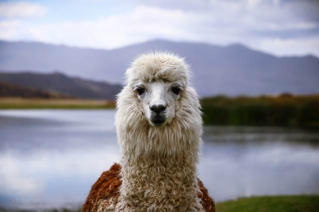 que visitar en perú