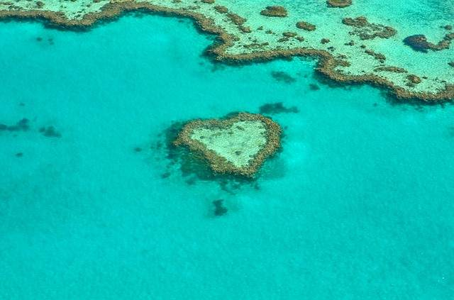 Luna de miel en Australia: tu viaje de novios en plena naturaleza