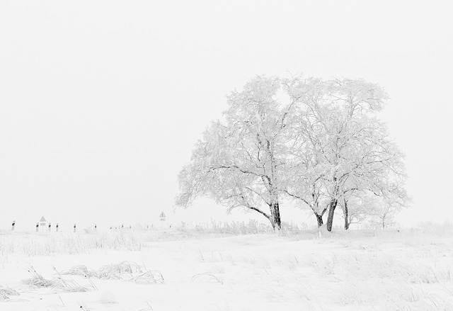 Lunas de miel en invierno: 5 destinos ideales para combatir el frío