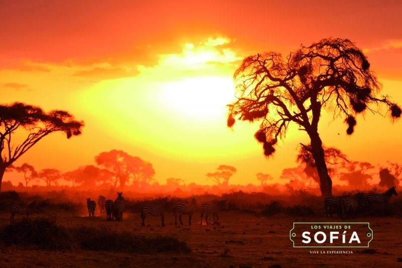 lunas-miel-2016-viaje-novios-kenia