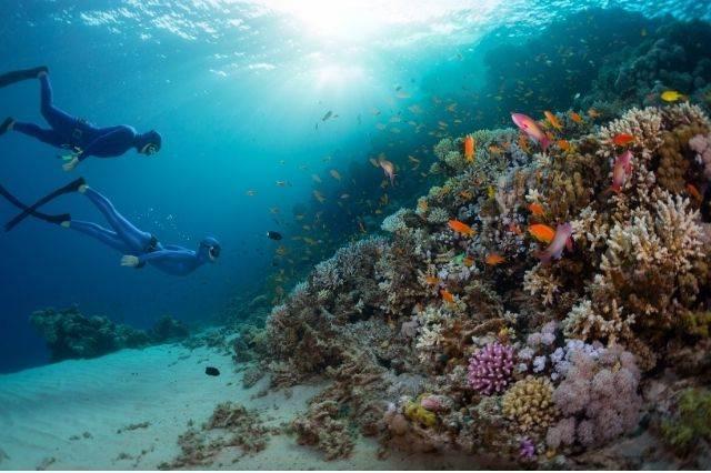 Submarinistas en el Mar Rojo