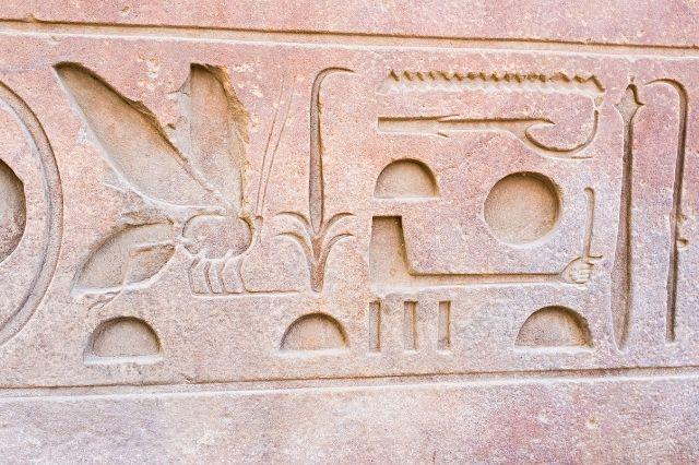 Mosquitos del Templo de Luxor