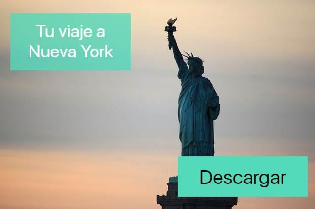 Banner de Nueva York