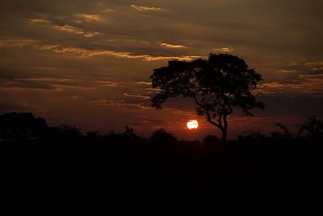 Atardecer en el Parque Kruger Sudáfrica