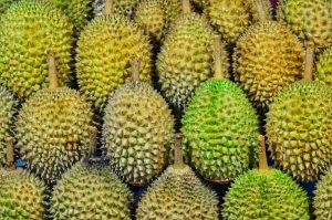 Fruta indonesia