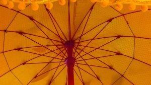 Sombrilla de camboya