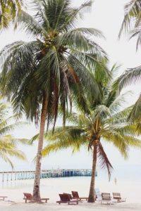 Tumbonas en la playa de Camboya