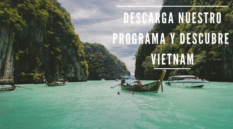 Programa de Vietnam