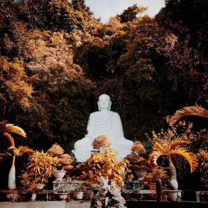 Buda blanco