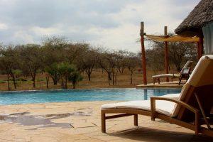 Piscina en hotel de safari
