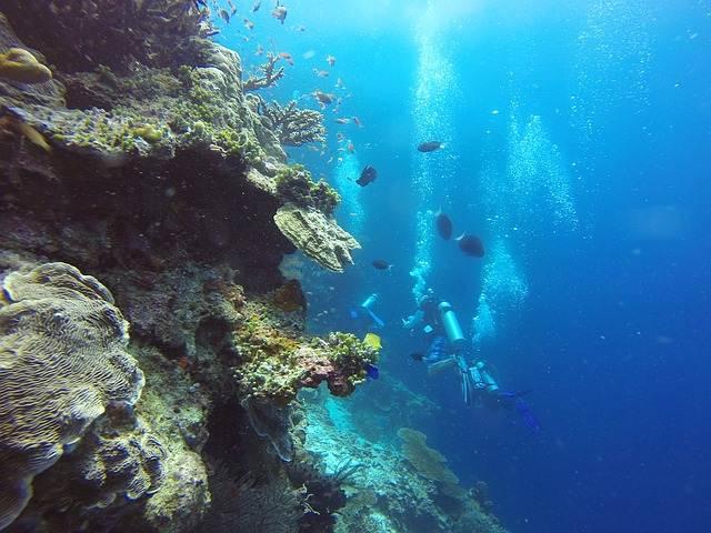 Snorkel en las Islas Gili