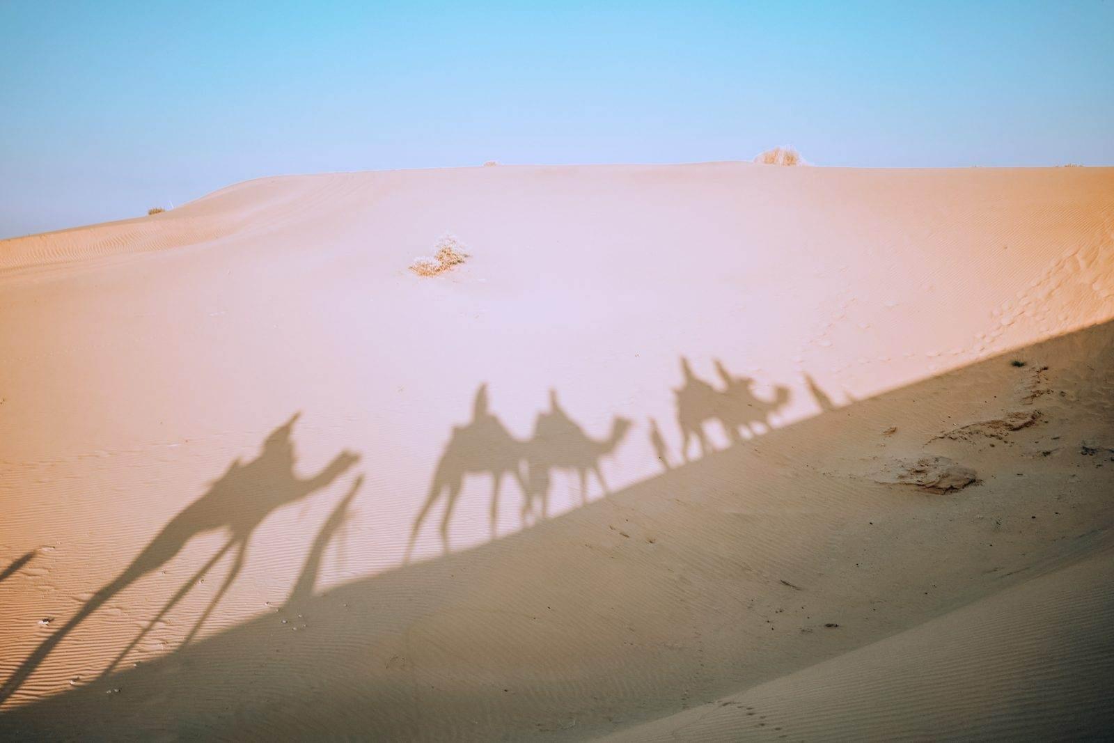 Desierto del Thar en Jaisalmer, India