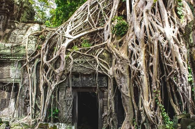 15 días en Camboya y Vietnam
