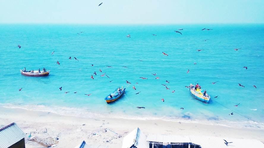 Bacas de pesca tradicional en Tamil Nadu
