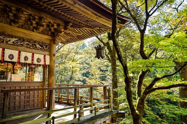 Templo japonés en el bosque