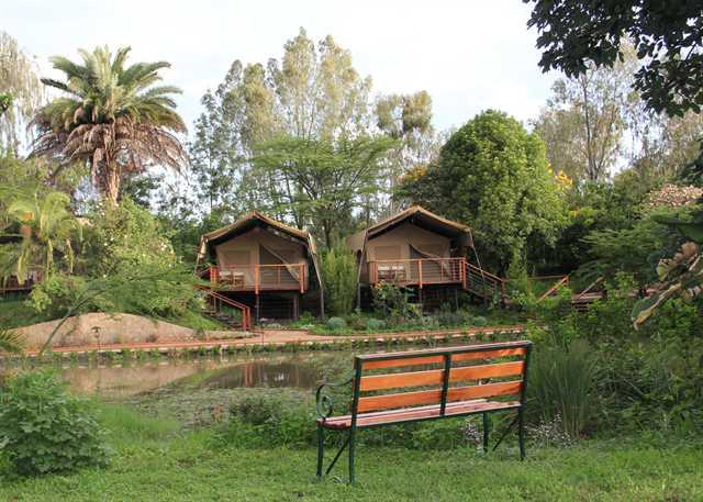 fotografía Hotel Wildebeest Eco camp