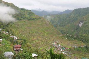 Terrazas de arrozales en Batad