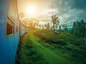 Tren con vistas a Sri Lanka