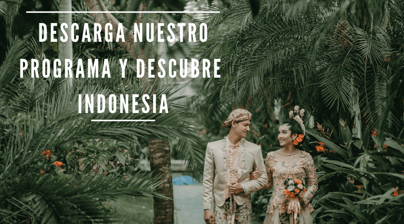 https://losviajesdesofia.com/descargar-programa-de-indonesia/