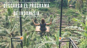 programa-indonesia