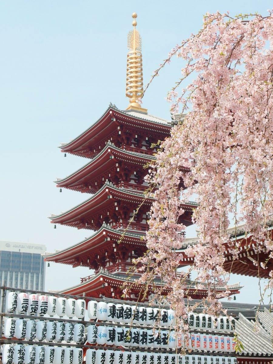 Japón en 15 días: ¿qué ver y qué es imprescindible?